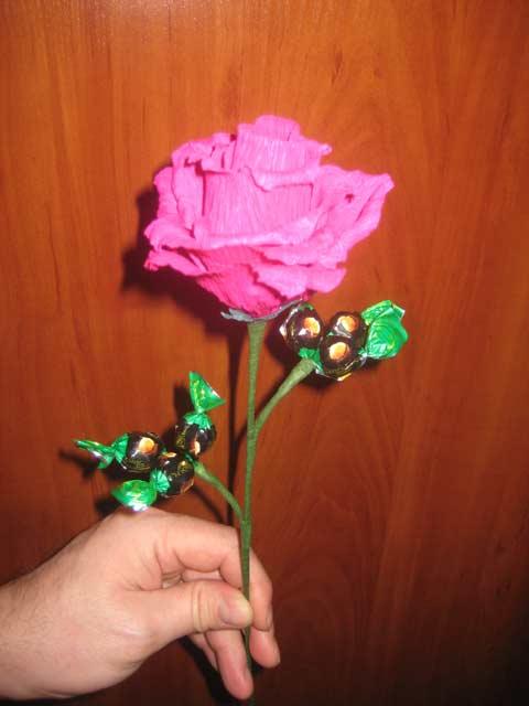 roza-konf.jpg