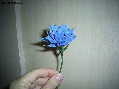 PIC_0042.jpg