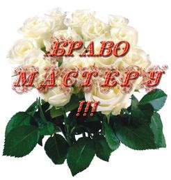 bravo_masteru_2013-03-29.jpg
