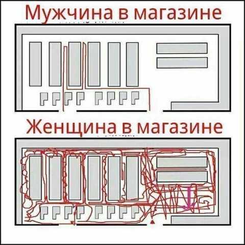 c479ec10c6f9b309f07b21d7239686de.jpg